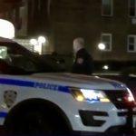 男子深夜橫穿皇后區小頸馬路被撞 肇事駕駛逃逸