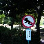 當心仰笑、禁止野放幼兒…創意路標讓人會心一笑