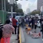 上海私家車連闖紅燈 釀5死9傷