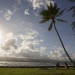 「讓夏威夷保持本色」 檀香山市議員提出法案推動