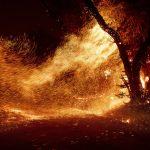 氣候變遷改變乾熱風 加州冬季野火會更猛