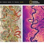 用光學雷達製作密西西比河地圖 美得令人屏息