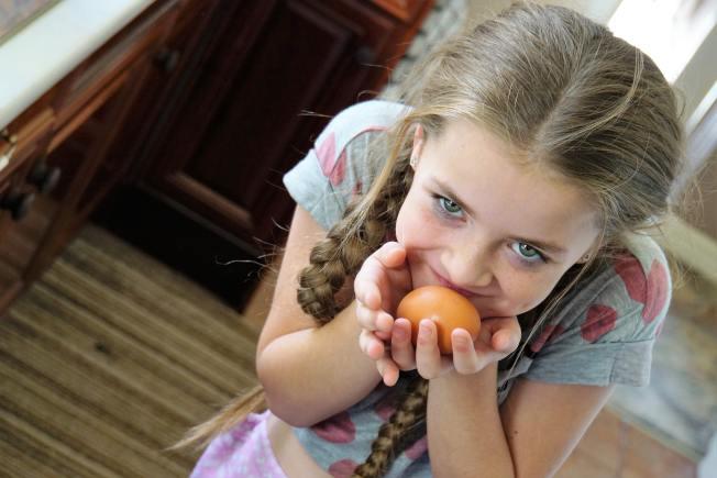 每次增加新食物,父母要讓孩子認識它。(Pixabay)
