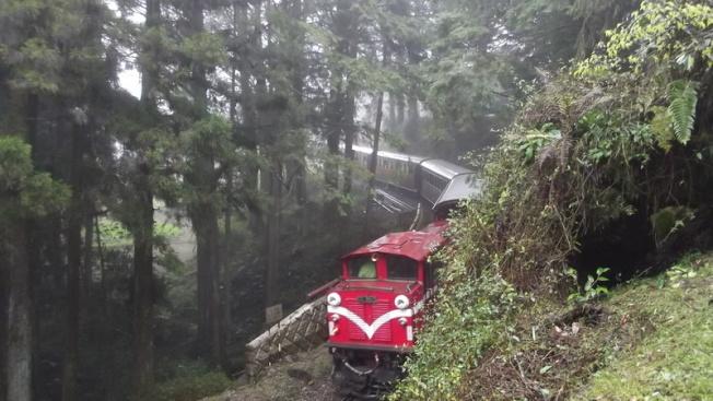 搭阿里山小火車是遊客必玩體驗。(聯合報系資料照片)
