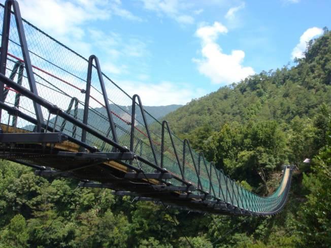南投縣奧萬大國家森林遊樂區吊橋,3日有幼童疑從縫隙踩空摔落,是完工十年來首起墜橋身亡事故。(圖:南投林管處提供)