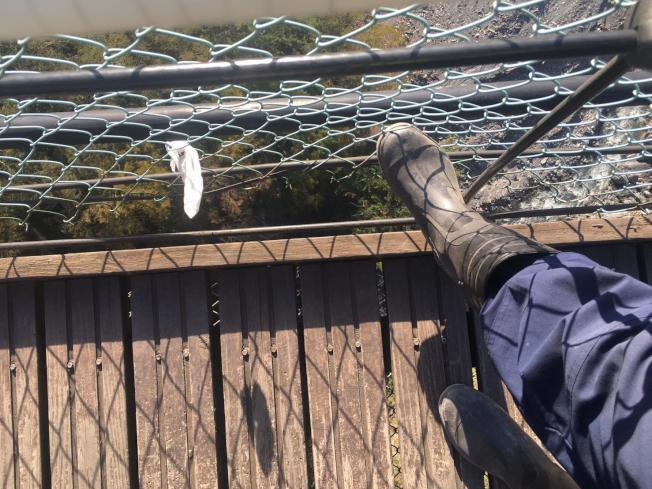 新北市許姓男童疑因重心不穩朝圍網倒去,造成圍網與橋面間縫隙變大,不幸墜橋。(圖:讀者提供)