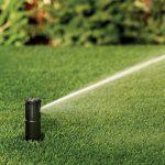 佛州橘郡秋季限水上路 庭院澆水每周1天