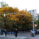 曼哈頓最平價街道 西107街 隱藏版寶地 歐巴馬也住過
