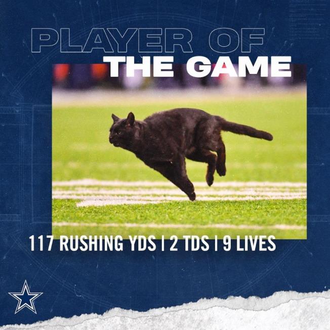 被巨人隊視為霉運的黑貓,卻受到牛仔隊在臉書上叫好吹捧。(牛仔隊臉書)
