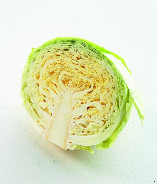 高麗菜。(本報資料照片)
