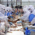 200萬磅雞肉召回!可能被汙染  食用有致死風險