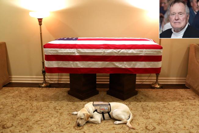 誰能忘記薩利守在老布希靈柩前面的鏡頭?(推特照片)