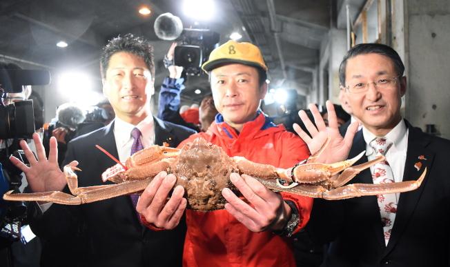 「五輝星」是日本鳥取縣松葉蟹的高級品牌,這隻蟹7日創下500萬日圓的拍賣紀錄。(歐新社)