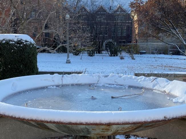公園水池結冰。(特派員黃惠玲/攝影)