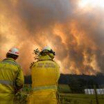 威脅600萬人 澳洲「災難級」野火逼近雪梨