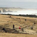 近900公斤古柯鹼沖上法國海岸!有人開3小時車去撿