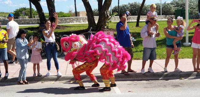 台灣遊行隊伍的彩獅沿途與觀眾互動,很受歡迎。(孫博先提供)