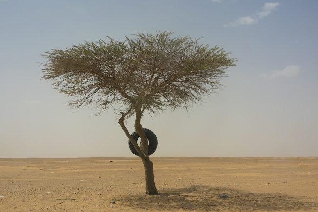 研究:新亞述帝國滅亡原因為氣候變遷