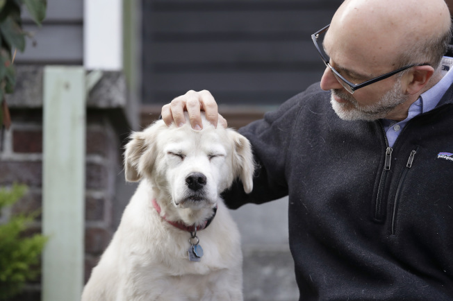 科學家現正進行有史以來最大規模的狗隻衰老研究,希望從中發現人類的長壽秘訣。圖為該計畫的共同主任、華盛頓大學醫學院的普羅米斯洛與他養的老狗 「飛盤」。(美聯社)
