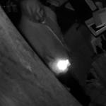 法拉盛華人餐館半夜遭竊 1周3起
