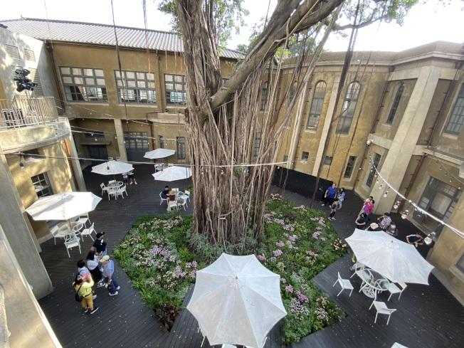 林志玲婚宴場地、台南市美術館榕樹區已布置花草盆栽,增添粉色喜氣,二樓露台也架好燈光。(記者鄭維真/攝影)