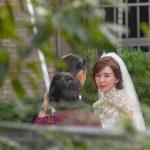 林志玲婚紗 蕾絲高領典雅