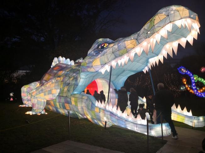 燈展上的鱷魚彩燈。(記者黃伊奕/攝影)