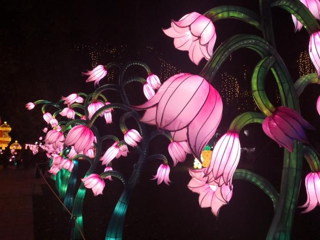 紐約冬季燈展上的鮮花彩燈。(記者黃伊奕/攝影)