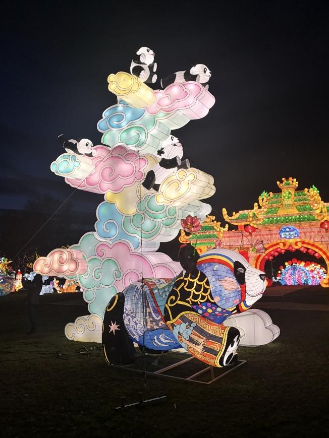 紐約冬季燈展上的熊貓花燈。(記者黃伊奕/攝影)