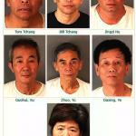 內陸破獲3間大麻屋 逮七華人