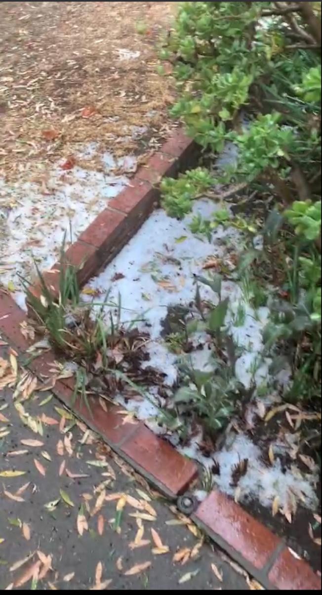 聖蓋博谷東區20日出現冰雹。(讀者提供)
