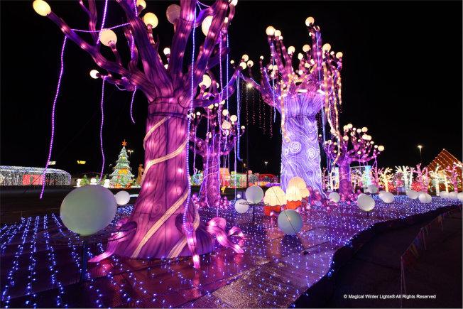 大型沉浸式燈光藝術嘉年華「璀璨星城」將於11月23日展出至明年1月5日。(LuminoCity Festival 2019提供)