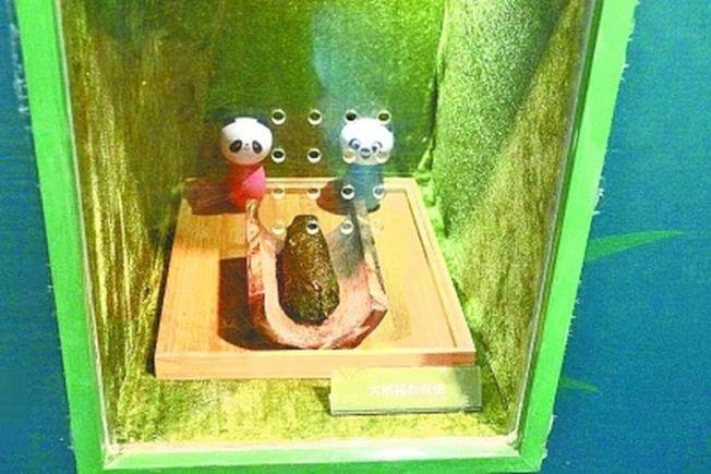 圖為供遊客嗅聞的大熊貓糞便。(取材自長江日報)
