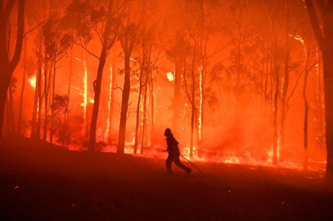 澳洲東南部野火不斷延燒,21日全國仍有數百起火警發生,維多利亞省也罕見頒布最高層級「紅色警戒」,是10年以來的第一次。 路透