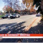 安坐車中遭掃射 11、14歲少年慘死