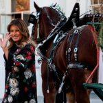 白宮現場 第一夫人迎接耶誕樹 馬背配飾有亮點