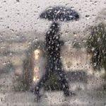 感恩節出遊小心 灣區將下大雨