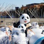 7折優惠…Hello Panda Festival藝術彩燈節  12.6開幕