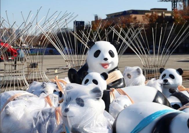 可愛的大小熊貓已在花旗球場,等著大家購票相見歡。(取自Hello Panda Festival的Instagram)