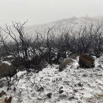 冰與火之歌?聖塔芭芭拉「火雨雪」奇景