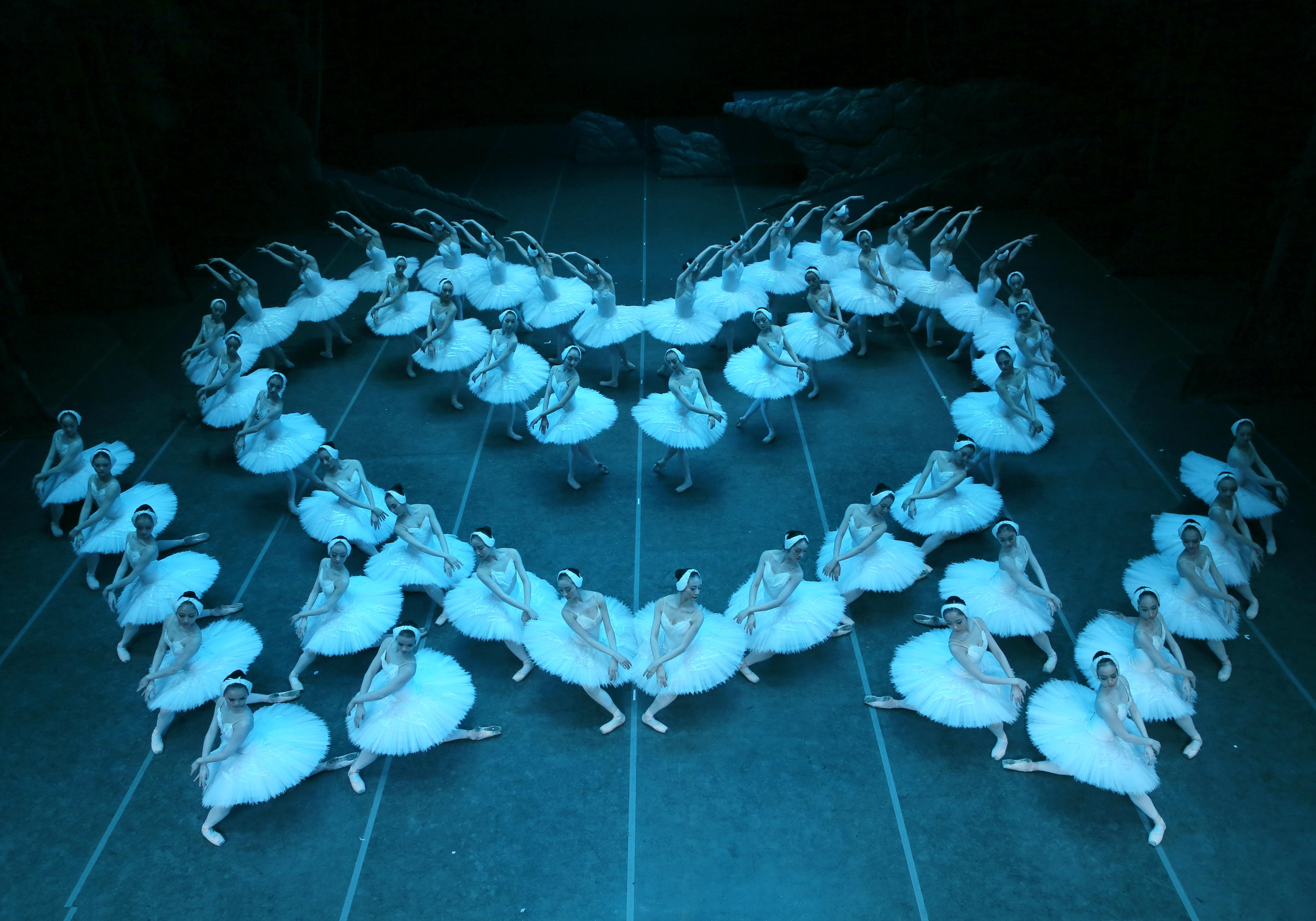 群鵝行雲流水般的隊形變化,近乎苛刻的編排與設計,群舞在速度與節奏上都做出美的呈現,並讓陪襯的天鵝群舞在古典芭蕾《天鵝湖》中成為氣勢磅礡的「吸晴亮點」。圖:上海芭蕾舞團/提供