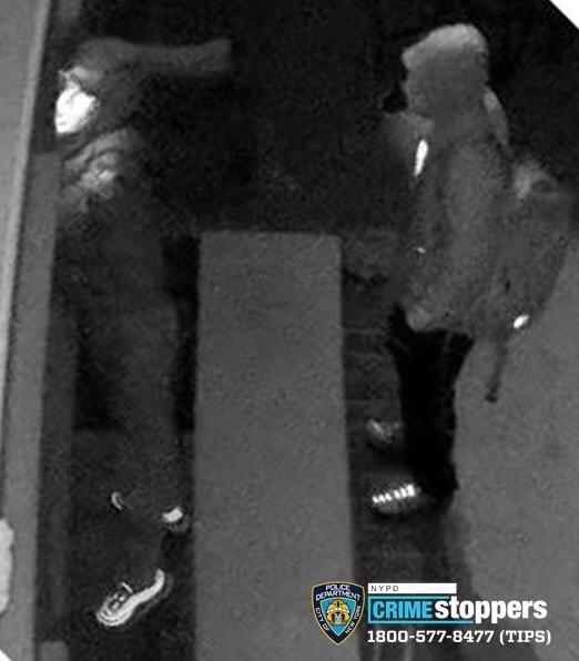 在北法拉盛和白石鎮多次入室盜竊的嫌犯。(警方提供)