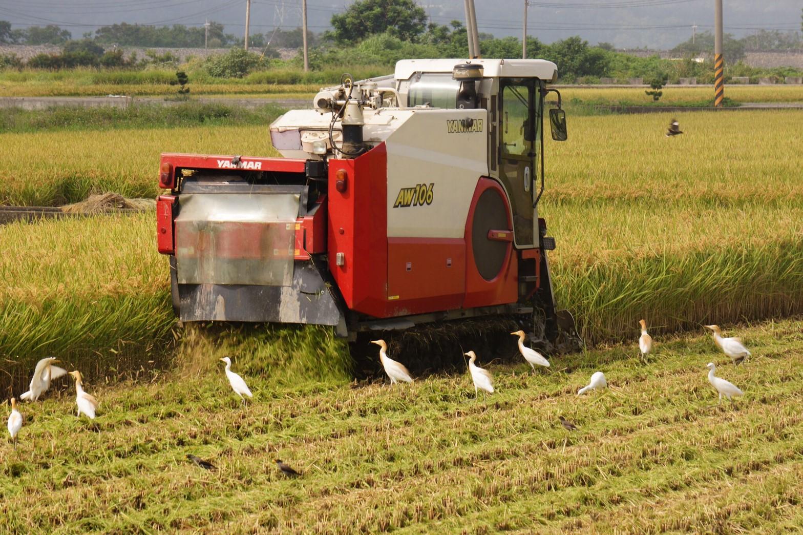 現代化動力機械設備,提升水稻產能。
