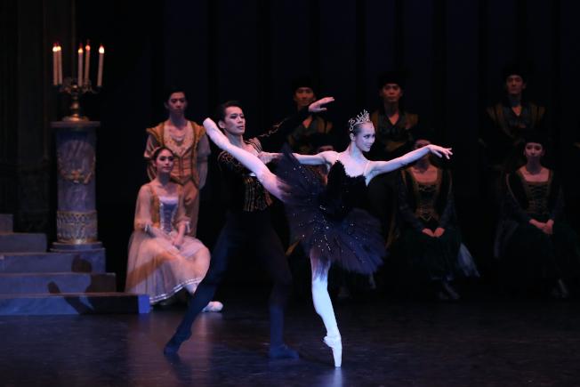 第三幕<br />戚冰雪飾演惡魔將其女兒變身的黑天鵝,出現在王子的舞會上,其柔美又高視闊步的舞動,展現十足魅力。(圖:上海芭蕾舞團提供)