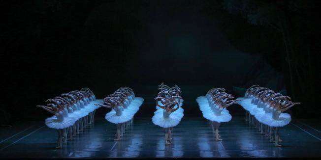 第二幕<br />整齊畫一、舞態生風的天鵝群舞,體現極致美感的同時,也考驗演員的整體實力。(圖:上海芭蕾舞團提供)