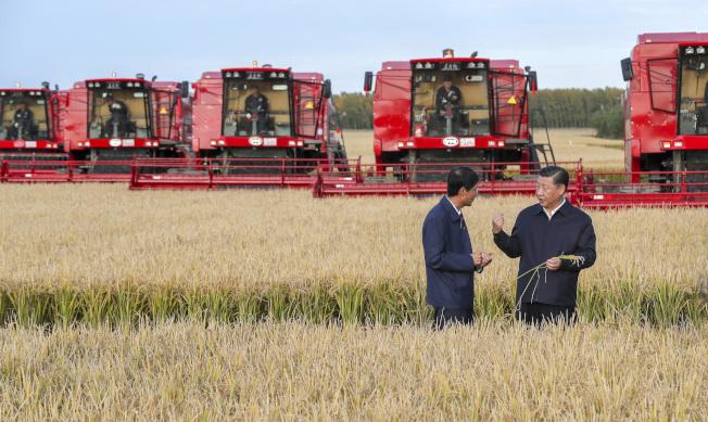 中國政府憂心美中貿易戰和氣候變遷對中國的糧食安全造成威脅。圖為國家主席習近平(右)2018年視察黑龍江省農場。(新華社資料照片)