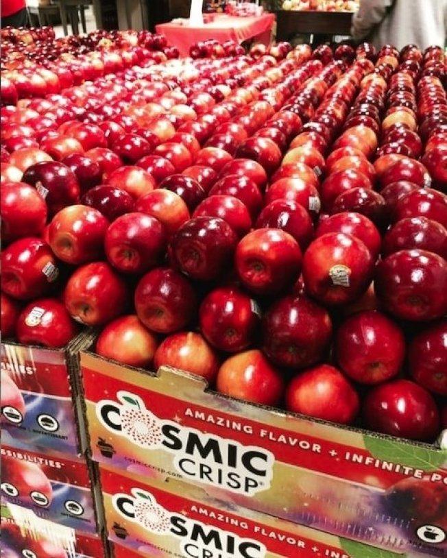 美國培育出新品種蘋果,香脆可口,而且冷藏可以擺放長達一年,削皮後果肉置於空氣中3星期也不會變色。最新一批1日正式上市,但首批才45萬多箱,恐怕不是人人都能買得到。圖取自/Instagram@thecosmiccrisp