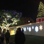 河濱市燈節宛如迪士尼 主流媒體譽為全美最佳