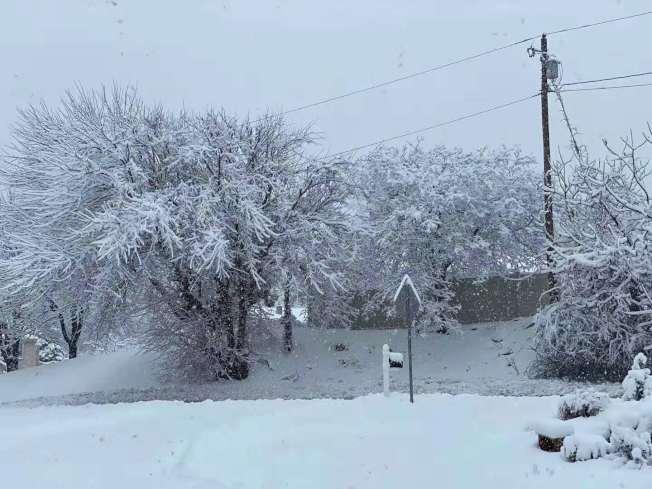 新州部分地區降雪近十吋。(取自社交網站)