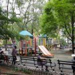 蘇域柏公園完工 全新綠地無邊界